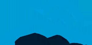 Digilife logo